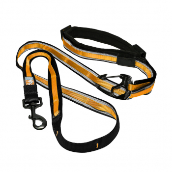 Kurgo Quantum Leash Hundeleine reflektierend schwarz / orange